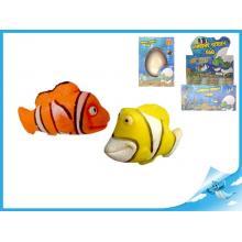 Líhnoucí a rostoucí mořská zvířátka 6druhů