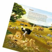 ALBI KČ Kniha Svět zvířat