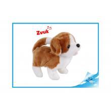 Pes plyšový 17cm bílo-hnědý chodící na baterie