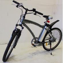 Elektrokolo Caesar bike - CityCross